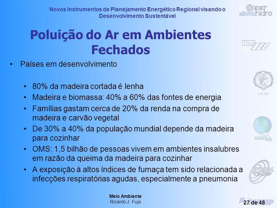 Novos Instrumentos de Planejamento Energético Regional visando o Desenvolvimento Sustentável Meio Ambiente Ricardo J. Fujii 26 de 48 Poluição do Ar em