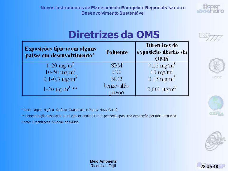 Novos Instrumentos de Planejamento Energético Regional visando o Desenvolvimento Sustentável Meio Ambiente Ricardo J. Fujii 27 de 48 Poluição do Ar em