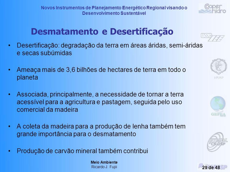 Novos Instrumentos de Planejamento Energético Regional visando o Desenvolvimento Sustentável Meio Ambiente Ricardo J. Fujii 28 de 48 Diretrizes da OMS