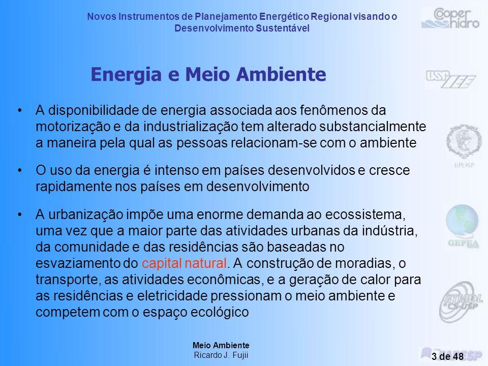 Meio Ambiente Ricardo J. Fujii 2 de 48 Desenvolvimento e Meio Ambiente Desenvolvimento humano Industrialização Impactos ambientais