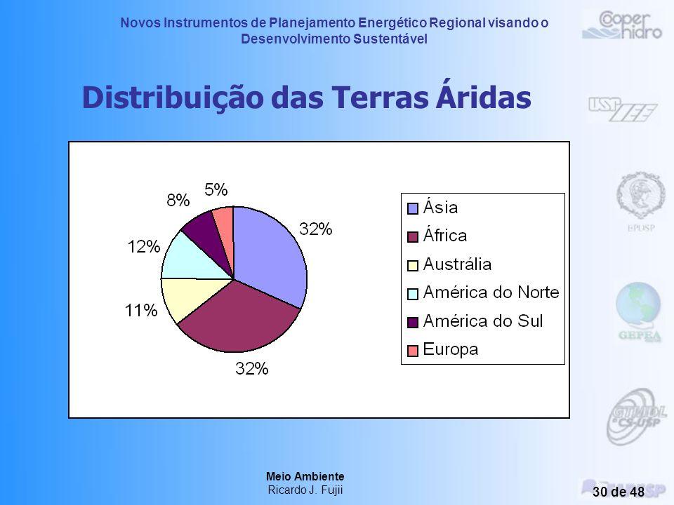 Novos Instrumentos de Planejamento Energético Regional visando o Desenvolvimento Sustentável Meio Ambiente Ricardo J. Fujii 29 de 48 Desmatamento e De
