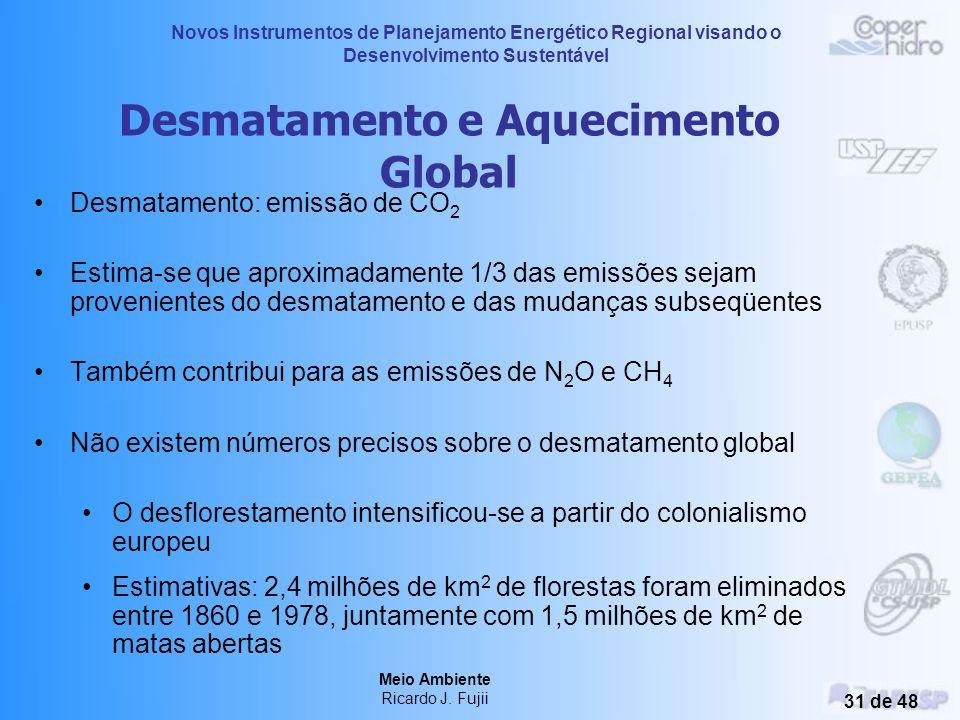 Novos Instrumentos de Planejamento Energético Regional visando o Desenvolvimento Sustentável Meio Ambiente Ricardo J. Fujii 30 de 48 Distribuição das
