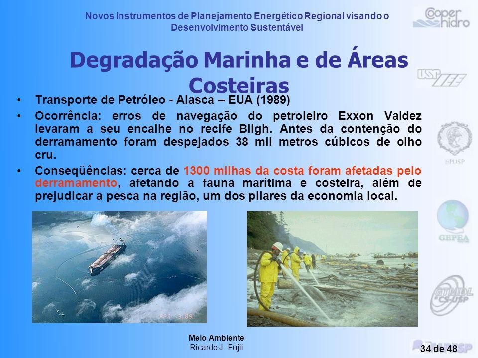 Novos Instrumentos de Planejamento Energético Regional visando o Desenvolvimento Sustentável Meio Ambiente Ricardo J. Fujii 33 de 48 Degradação Marinh