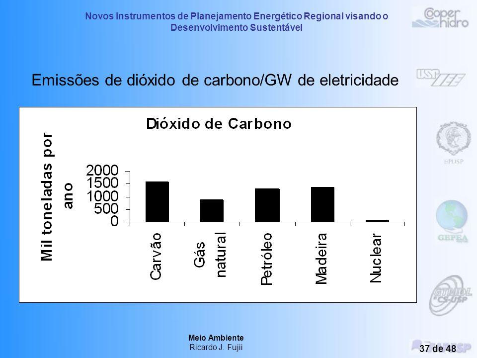 Novos Instrumentos de Planejamento Energético Regional visando o Desenvolvimento Sustentável Meio Ambiente Ricardo J. Fujii 36 de 48 Emissões de óxido