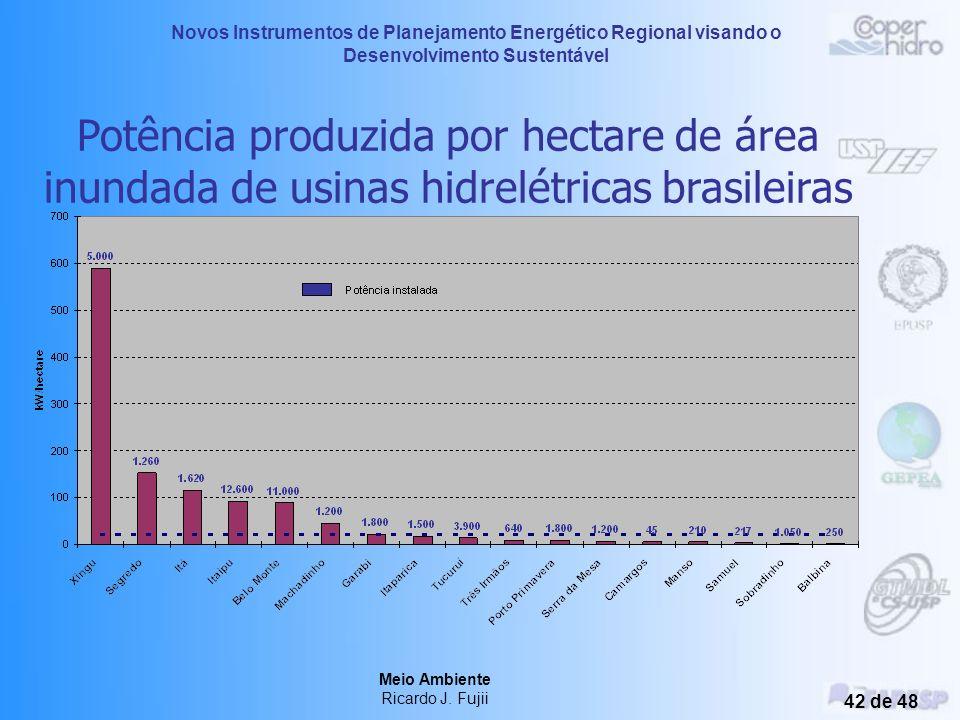 Novos Instrumentos de Planejamento Energético Regional visando o Desenvolvimento Sustentável Meio Ambiente Ricardo J. Fujii 41 de 48 Usinas Hidrelétri