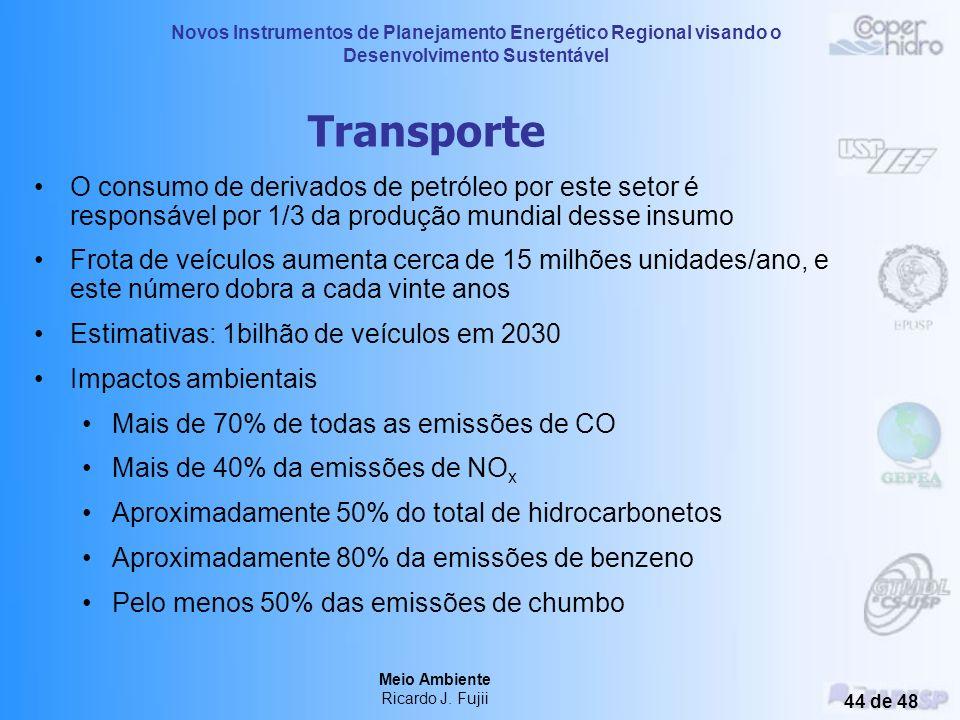 Novos Instrumentos de Planejamento Energético Regional visando o Desenvolvimento Sustentável Meio Ambiente Ricardo J. Fujii 43 de 48 Três Gargantas -