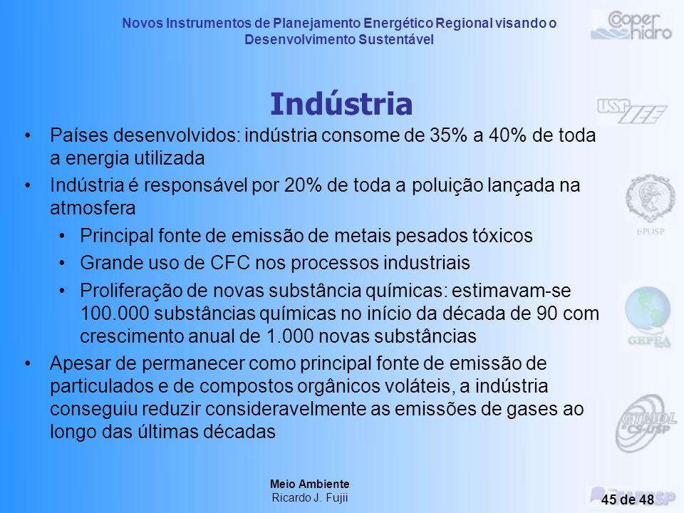 Novos Instrumentos de Planejamento Energético Regional visando o Desenvolvimento Sustentável Meio Ambiente Ricardo J. Fujii 44 de 48 Transporte O cons