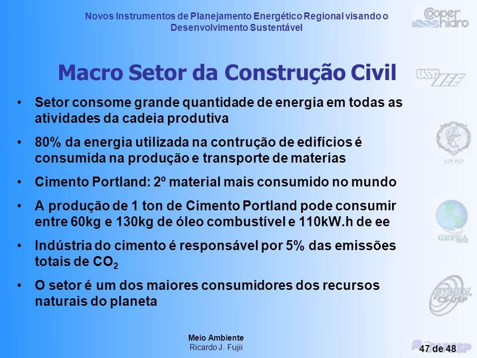 Novos Instrumentos de Planejamento Energético Regional visando o Desenvolvimento Sustentável Meio Ambiente Ricardo J. Fujii 46 de 48 Consumo global de