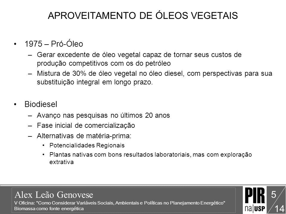 Alex Leão Genovese V Oficina: