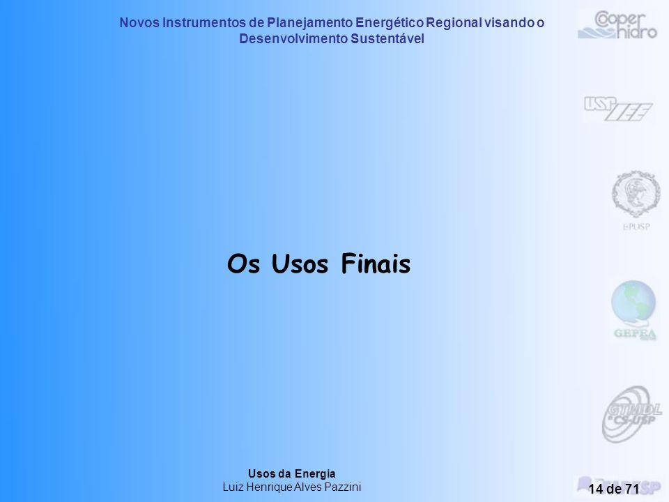 Novos Instrumentos de Planejamento Energético Regional visando o Desenvolvimento Sustentável Usos da Energia Luiz Henrique Alves Pazzini 13 de 71 Para