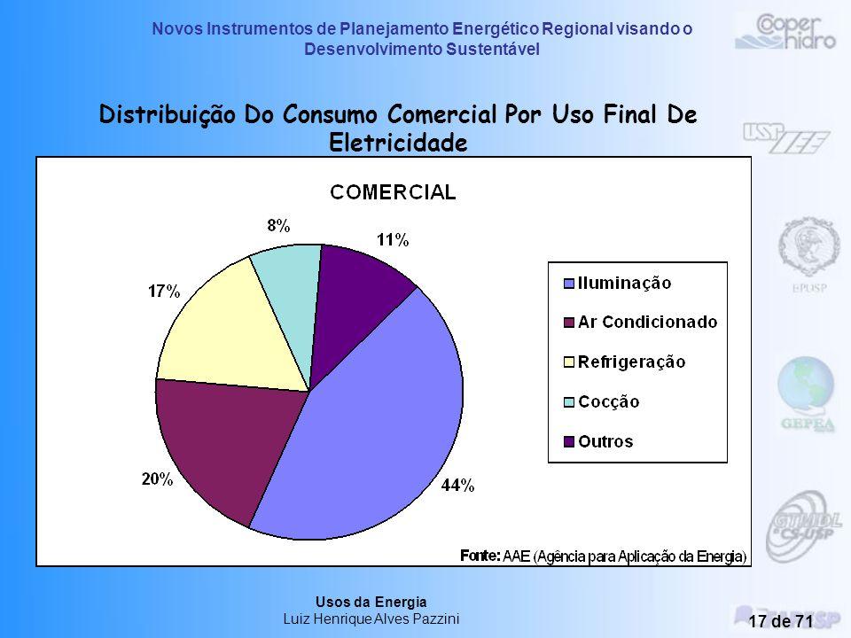 Novos Instrumentos de Planejamento Energético Regional visando o Desenvolvimento Sustentável Usos da Energia Luiz Henrique Alves Pazzini 16 de 71 Dist