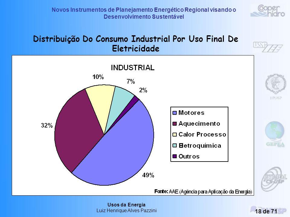 Novos Instrumentos de Planejamento Energético Regional visando o Desenvolvimento Sustentável Usos da Energia Luiz Henrique Alves Pazzini 17 de 71 Dist