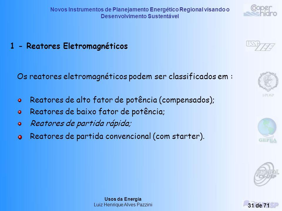Novos Instrumentos de Planejamento Energético Regional visando o Desenvolvimento Sustentável Usos da Energia Luiz Henrique Alves Pazzini 30 de 71 Reat