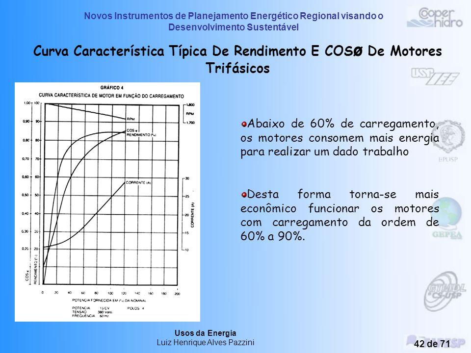Novos Instrumentos de Planejamento Energético Regional visando o Desenvolvimento Sustentável Usos da Energia Luiz Henrique Alves Pazzini 41 de 71 Clas