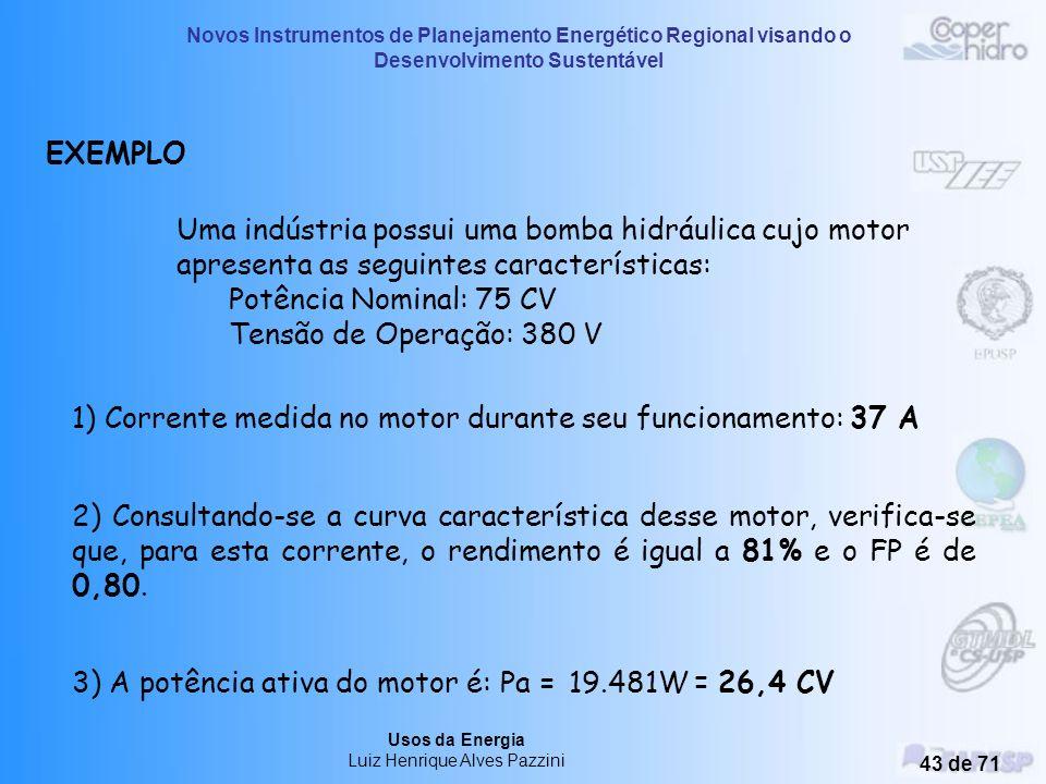 Novos Instrumentos de Planejamento Energético Regional visando o Desenvolvimento Sustentável Usos da Energia Luiz Henrique Alves Pazzini 42 de 71 Curv
