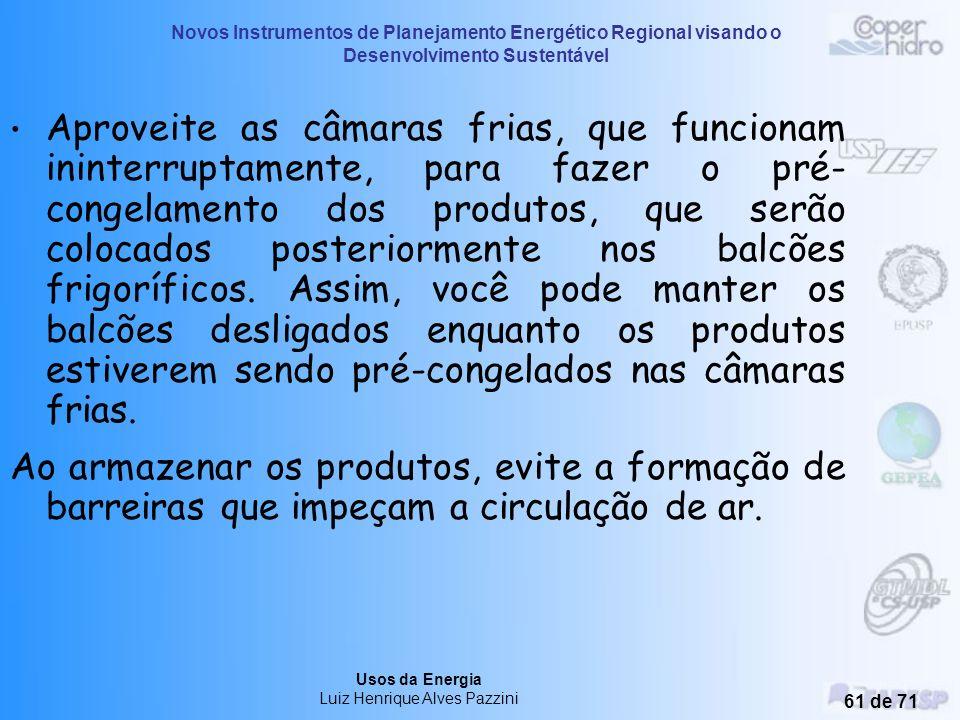 Novos Instrumentos de Planejamento Energético Regional visando o Desenvolvimento Sustentável Usos da Energia Luiz Henrique Alves Pazzini 60 de 71 Evit