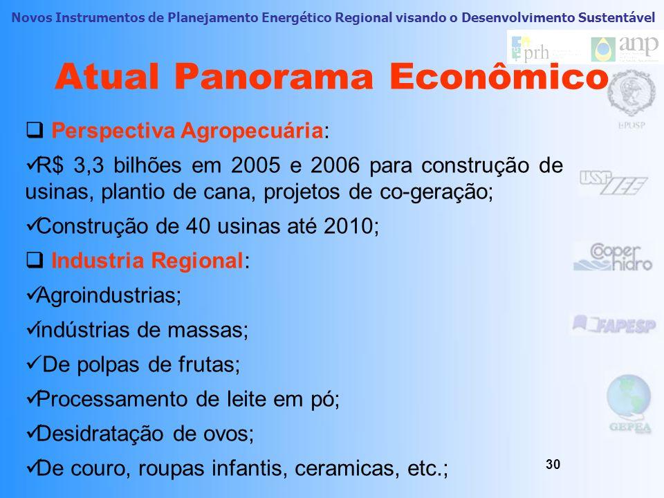 Novos Instrumentos de Planejamento Energético Regional visando o Desenvolvimento Sustentável Atual Panorama Econômico