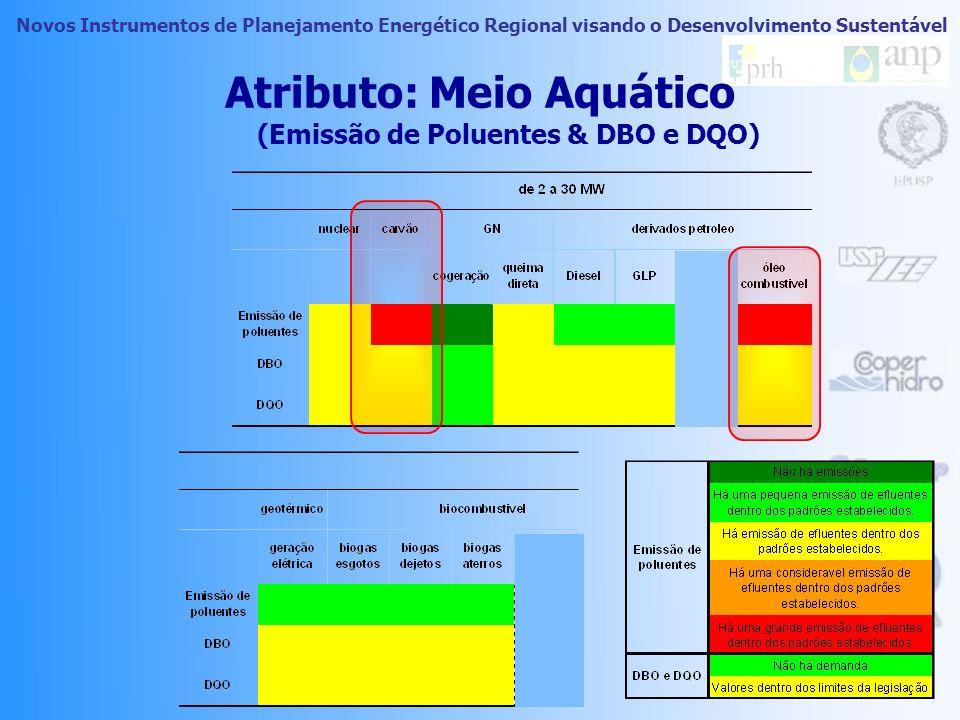 Novos Instrumentos de Planejamento Energético Regional visando o Desenvolvimento Sustentável Atributo: Meio Aquático (Emissão de Poluentes & DBO e DQO)