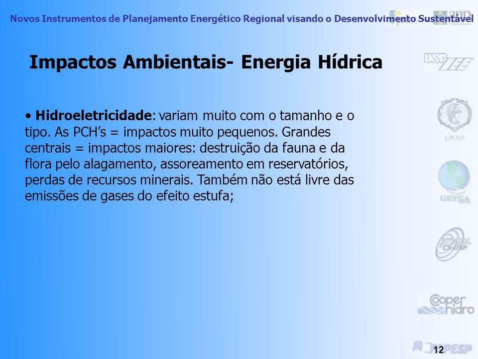 Novos Instrumentos de Planejamento Energético Regional visando o Desenvolvimento Sustentável 11