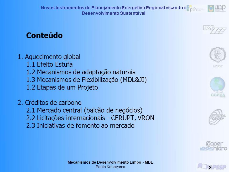 Protocolo de Kyoto e Certificação de Créditos de Carbono I Paulo Hélio Kanayama Treinamento – 26,27 e 28 de julho de 2006 Araçatuba - SP Novos Instrum