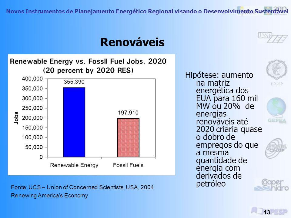 Novos Instrumentos de Planejamento Energético Regional visando o Desenvolvimento Sustentável 12 Fonte: Worldwatch Institute Center for American Progre