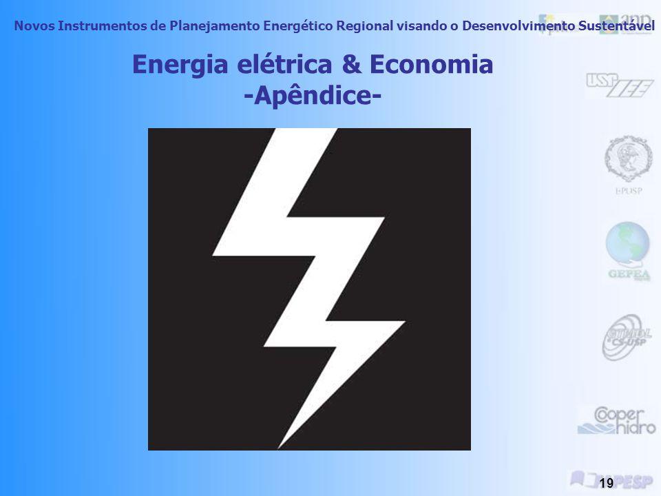 Novos Instrumentos de Planejamento Energético Regional visando o Desenvolvimento Sustentável 18 A industrialização brasileira não foi planejada levando em consideração os aspectos ambientais.