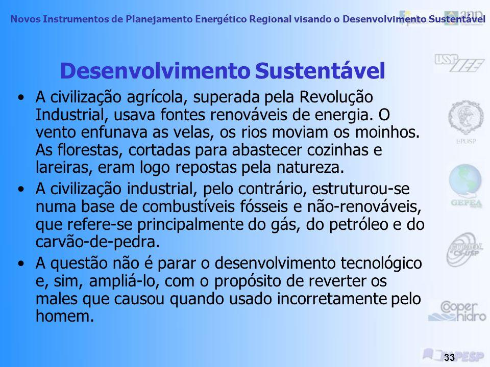 Novos Instrumentos de Planejamento Energético Regional visando o Desenvolvimento Sustentável 32 Desenvolvimento Sustentável A racionalidade produtivis