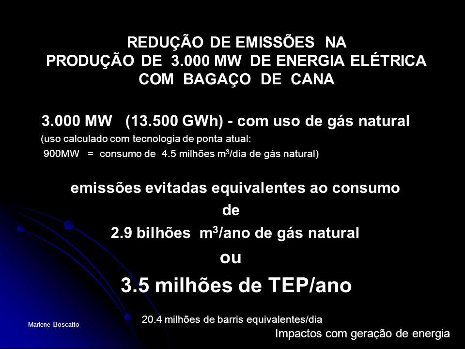 Impactos com geração de energia Marlene Boscatto REDUÇÃO DE EMISSÕES NA PRODUÇÃO DE 3.000 MW DE ENERGIA ELÉTRICA COM BAGAÇO DE CANA 3.000 MW (13.500 G