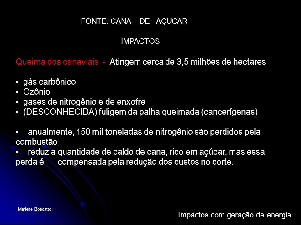Impactos com geração de energia Marlene Boscatto Queima dos canaviais - Atingem cerca de 3,5 milhões de hectares gás carbônico Ozônio gases de nitrogê