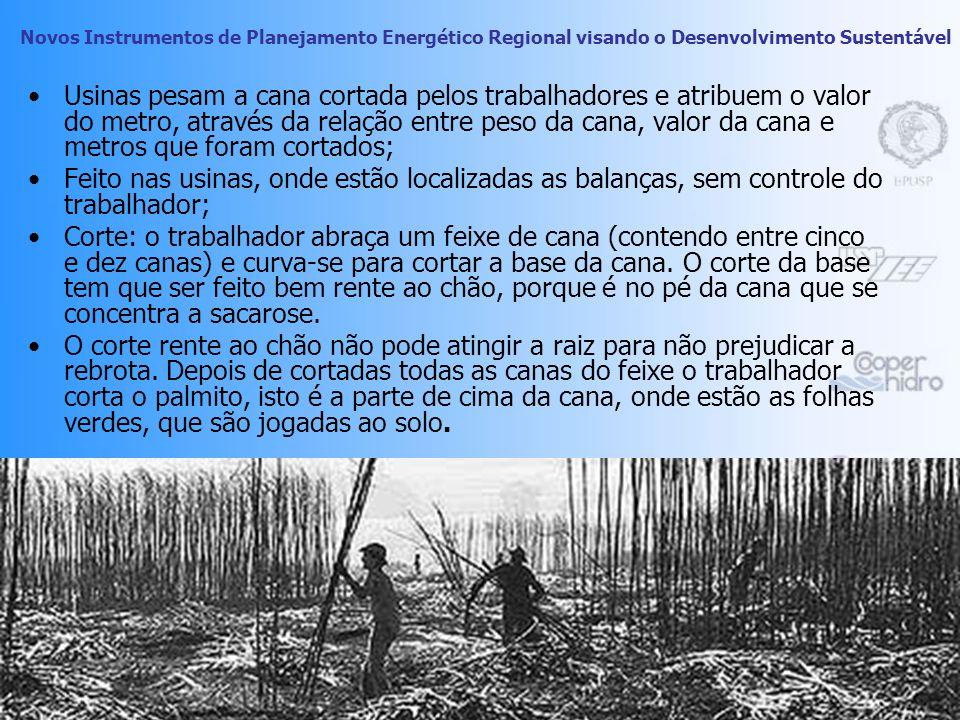 Novos Instrumentos de Planejamento Energético Regional visando o Desenvolvimento Sustentável 17 Década de 60: produtividade de 3 toneladas de cana por