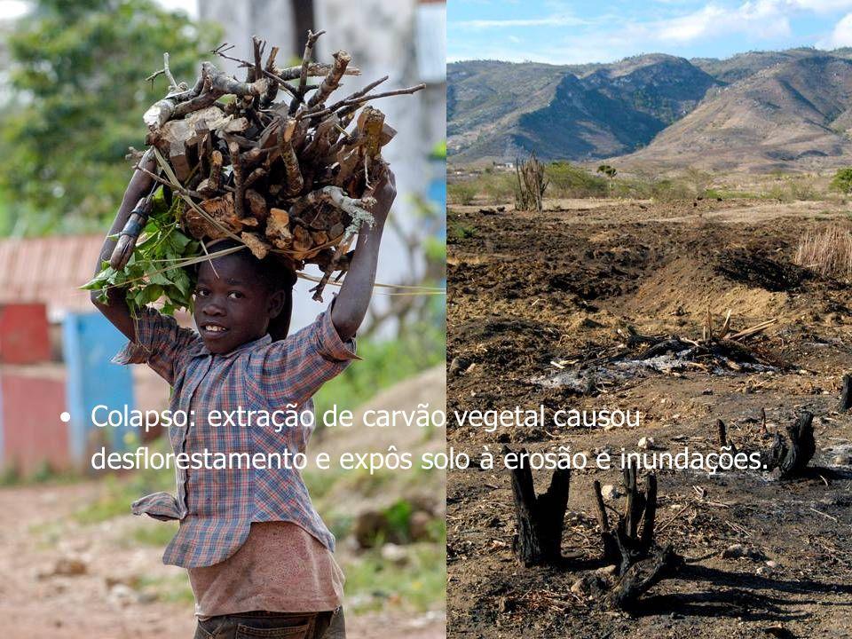 Novos Instrumentos de Planejamento Energético Regional visando o Desenvolvimento Sustentável 3 Fontes Renováveis, sempre? Situação no Haiti