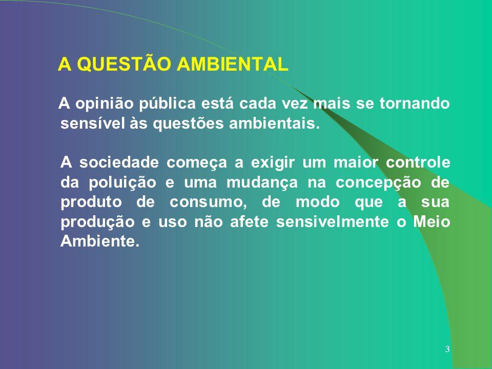34 CUSTOS AMBIENTAIS DA LINHA DE TRANSMISSÃO