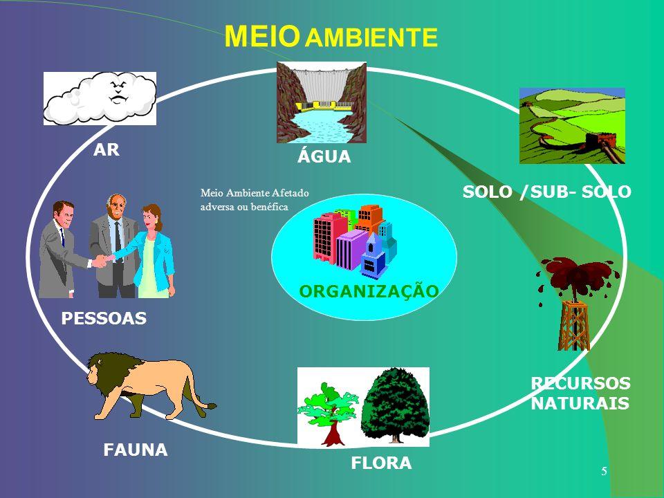 5 MEIO AMBIENTE ÁGUA SOLO /SUB- SOLO RECURSOS NATURAIS FLORA FAUNA PESSOAS AR ORGANIZAÇÃO Meio Ambiente Afetado adversa ou benéfica