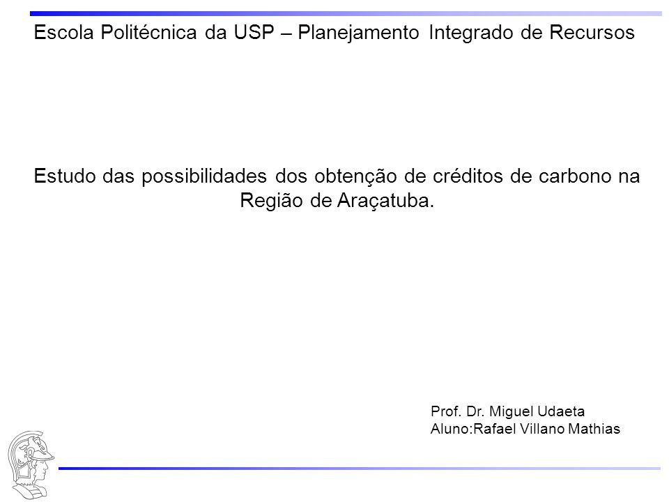 Escola Politécnica da USP – Planejamento Integrado de Recursos Estudo das possibilidades dos obtenção de créditos de carbono na Região de Araçatuba. P