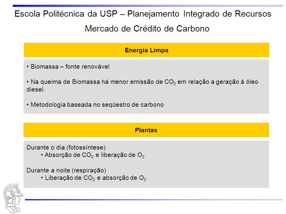 Escola Politécnica da USP – Planejamento Integrado de Recursos Energia Limpa Biomassa – fonte renovável Na queima de Biomassa há menor emissão de CO 2