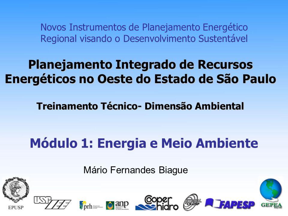 Planejamento Integrado de Recursos Energéticos no Oeste do Estado de São Paulo Treinamento Técnico- Dimensão Ambiental Novos Instrumentos de Planejamento Energético Regional visando o Desenvolvimento Sustentável Módulo 1: Energia e Meio Ambiente Mário Fernandes Biague