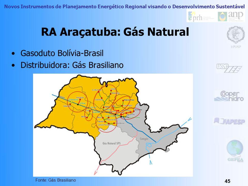 Novos Instrumentos de Planejamento Energético Regional visando o Desenvolvimento Sustentável Futuras Integrações Energéticas Sul- Americanas através d