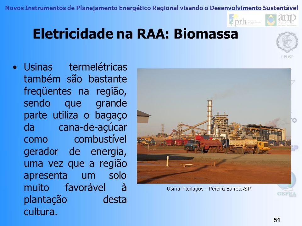 Novos Instrumentos de Planejamento Energético Regional visando o Desenvolvimento Sustentável 50 Eletricidade na RA de Araçatuba A Região apresenta um