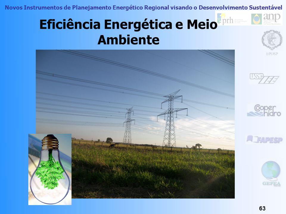Novos Instrumentos de Planejamento Energético Regional visando o Desenvolvimento Sustentável América do Sul: Conclusões Já a Venezuela é singular, já