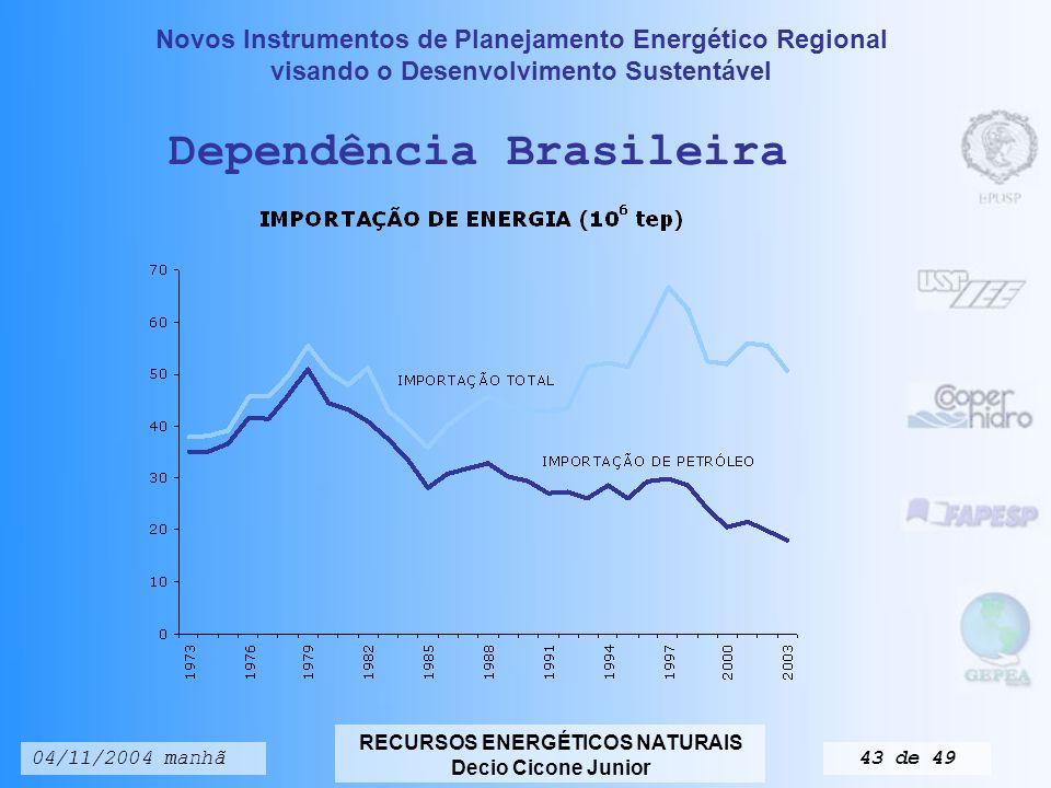 Novos Instrumentos de Planejamento Energético Regional visando o Desenvolvimento Sustentável RECURSOS ENERGÉTICOS NATURAIS Decio Cicone Junior 04/11/2