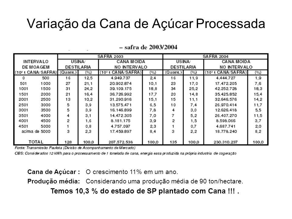 Variação da Cana de Açúcar Processada Cana de Açúcar :O crescimento 11% em um ano. Produção média:Considerando uma produção média de 90 ton/hectare. T