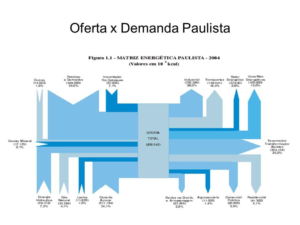 Crescimento Domiciliar no Estado de SP Domicílios Urbanos cresceu 43% Domicílios Rurais cresceu 12% População cresceu 23%
