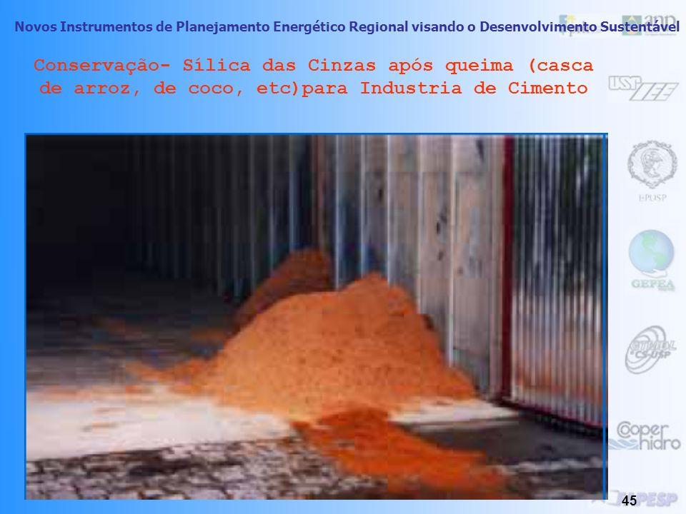 Novos Instrumentos de Planejamento Energético Regional visando o Desenvolvimento Sustentável 44 Dimensão Social do PIR Conservação dos Resíduos Agríco