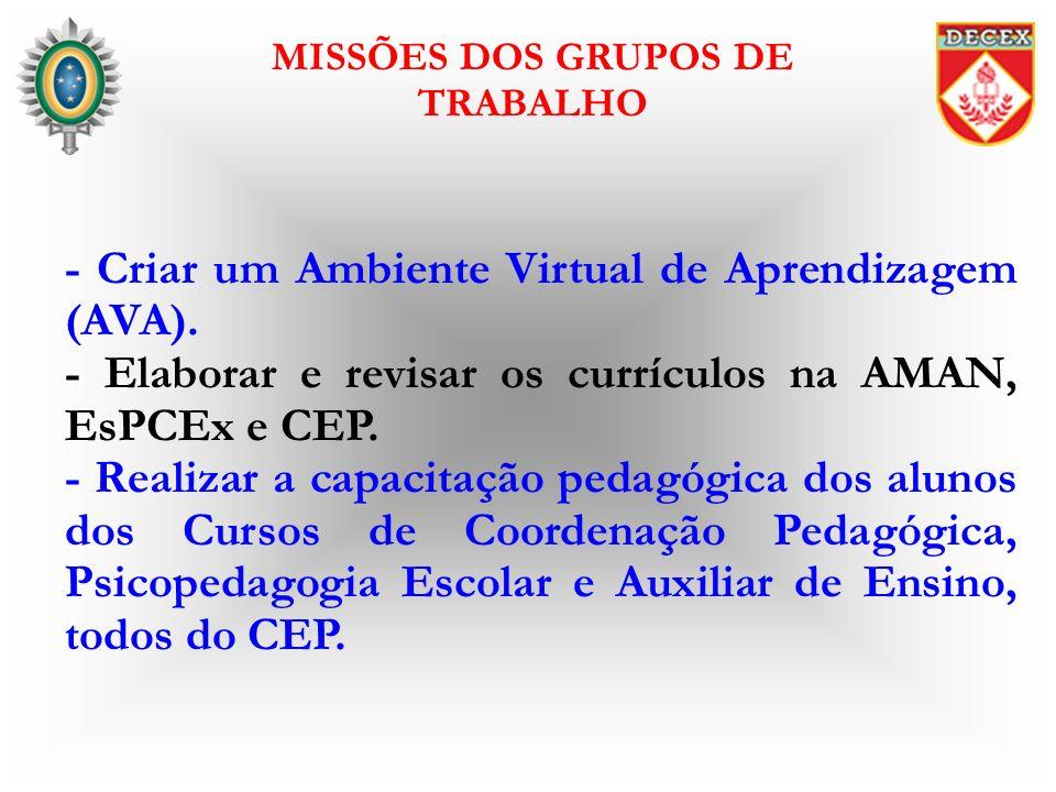 - Criar um Ambiente Virtual de Aprendizagem (AVA). - Elaborar e revisar os currículos na AMAN, EsPCEx e CEP. - Realizar a capacitação pedagógica dos a