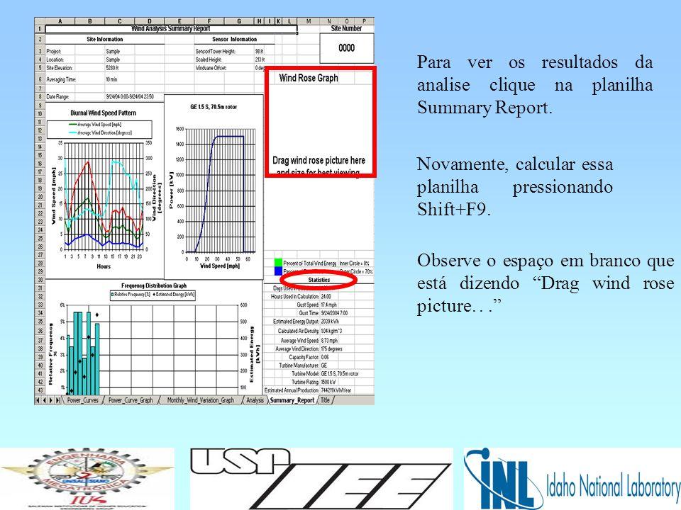 Para ver os resultados da analise clique na planilha Summary Report.