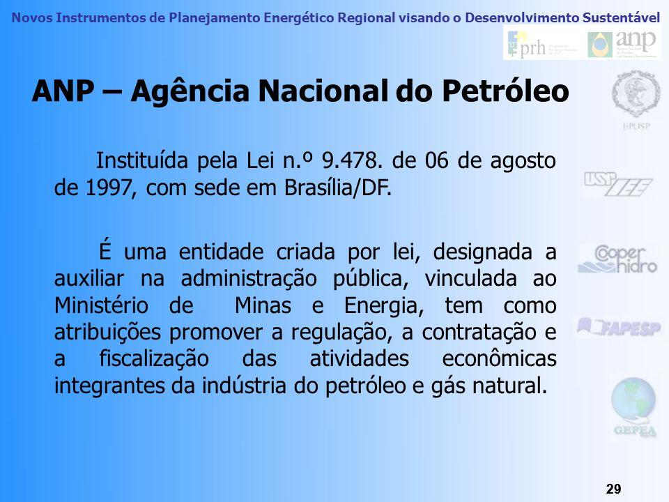 Novos Instrumentos de Planejamento Energético Regional visando o Desenvolvimento Sustentável 28 INSTITUIÇÕES DO SETOR ENERGÉTICO