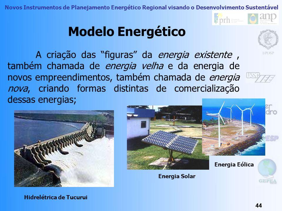 Novos Instrumentos de Planejamento Energético Regional visando o Desenvolvimento Sustentável 43 Fonte: Dedini/2006