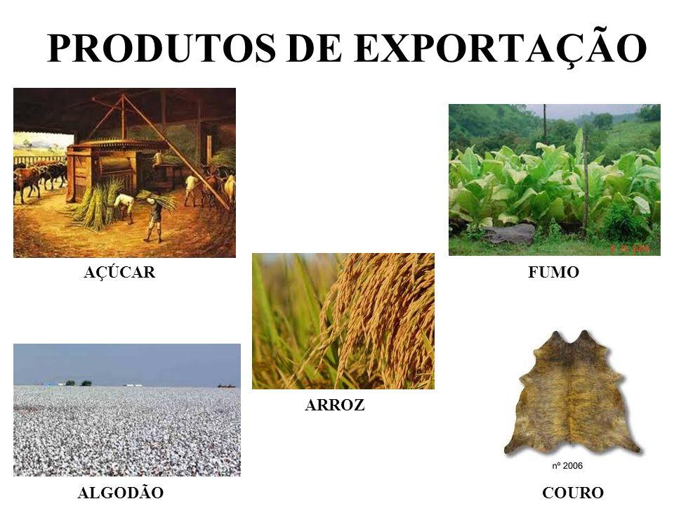 PRODUTOS DE EXPORTAÇÃO FUMO AÇÚCAR ALGODÃO ARROZ COURO