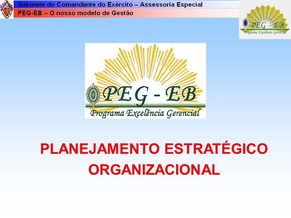 Ambiente Organizacional e seus Componentes Processos : Conjuntos de atividades organizadas que garantem a realização das idéias.