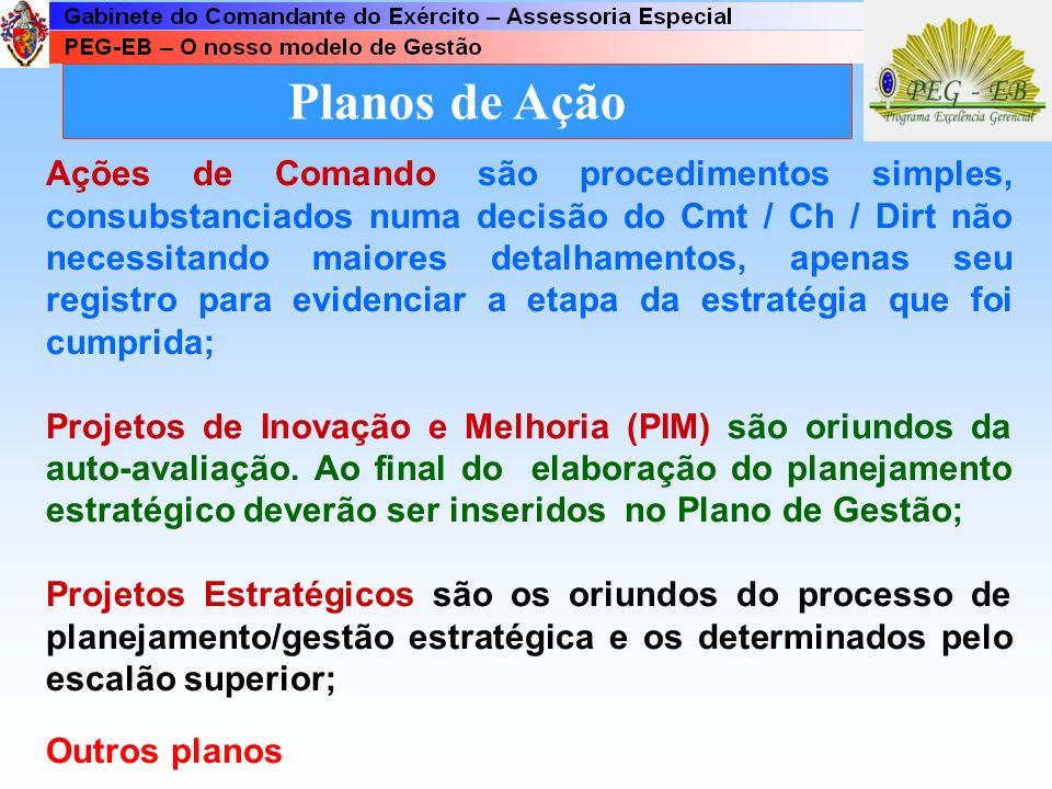 Planos de Ação Os planos de ação estão caracterizados por: Ações de Comando; Projetos; e Outros planos complementares. Os Projetos podem ser simples o
